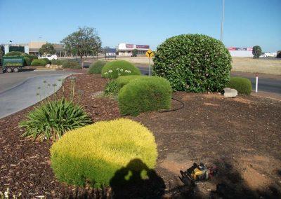 commercial gardening (1)