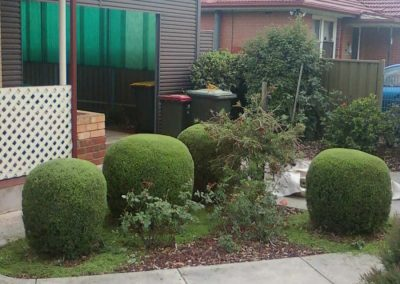 gardening (6)